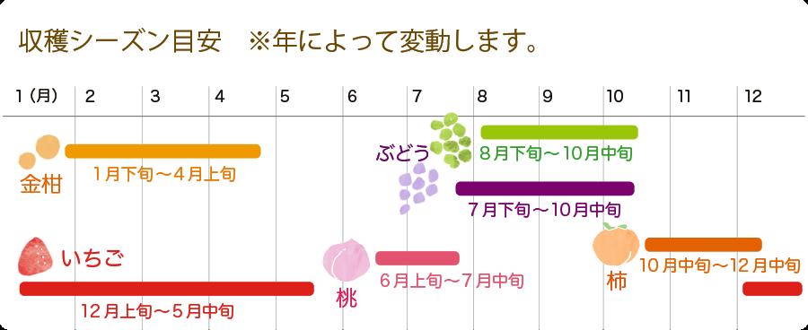 果物カレンダー
